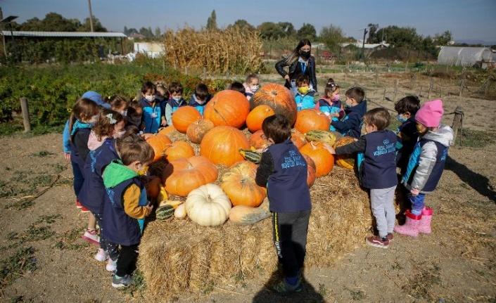 Bursa Nilüfer'de öğrenciler Kent Bostanları'nı  ziyaret etti