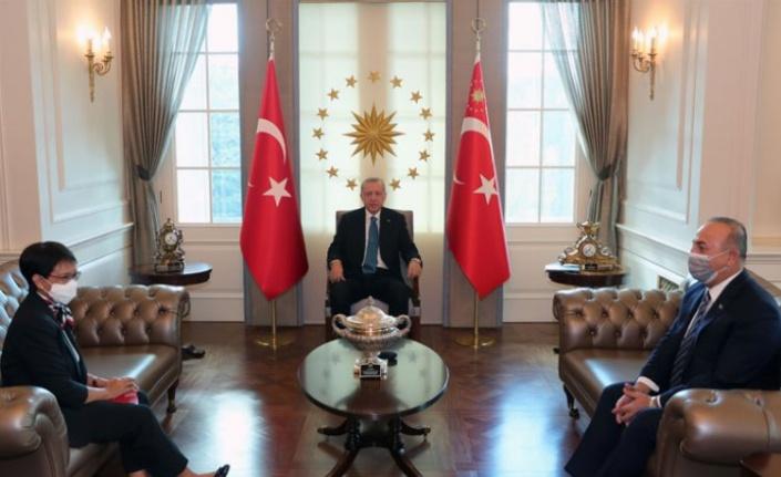 Endonezya Dışişleri Bakanı, Çankaya Köşkü'nde
