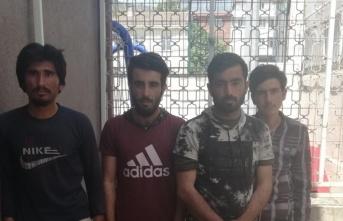 Kocaeli'de 4 düzensiz göçmen muhafaza altına alındı