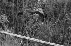 Darıca'da ağaçlık alanda erkek cesedi bulundu
