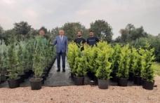 Belediyenin ürettiği fidanların Türkiye'nin her bölgesine gönderilmesi hedefleniyor