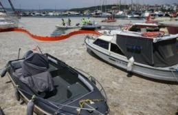 Çanakkale Boğazı'nın Ege çıkışında da gözlemlenen müsilaj küçük tekneleri tehdit ediyor