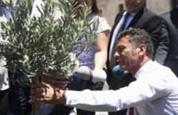"""Milletvekili Sarıbal: """"Marmarabirlik, üreticiyi..."""