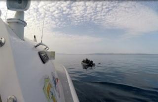 Balıkesir açıklarında Türk kara sularına geri...