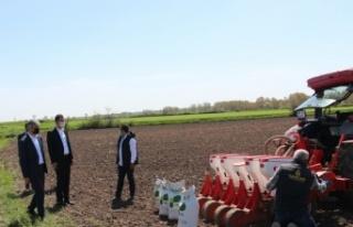 Edirne'de soya fasulyesi üretimini yaygınlaştırmak...