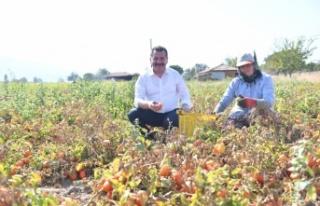 Balıkesir Büyükşehir Belediyesi 15 bin 47 hektar...