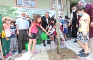Sultangazi Belediyesi, ağaç dikim seferberliği...