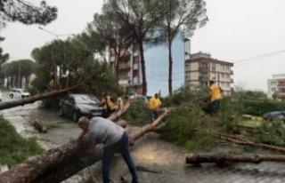 Aydın Büyükşehir Belediyesi Nazilli'de seferberlik...