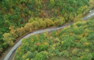 Ganos Dağı eteklerindeki ormanlar sonbahar renklerine...