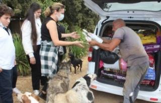 İzmir'de Bucalı öğrenciler hayvanlar için...