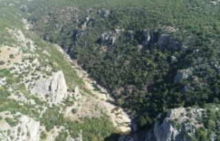 Kaya tırmanışı tutkunları Kocaeli'deki şenlikte...