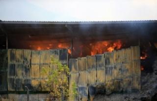 Kırklareli'nde besi çiftliğindeki yangını söndürme...