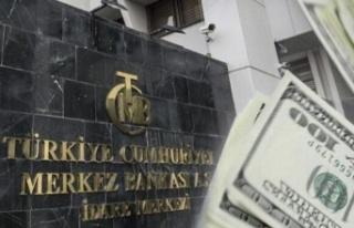Merkez Bankası'nda toplam rezerv 123 milyar...