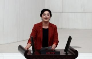 TBMM Genel Kurulunda CHP, HDP ve İYİ Parti'nin grup...