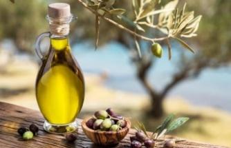 Uzmanlar, iklim değişikliğinin zeytin ve zeytinyağı kalitesine etkisini değerlendirdi