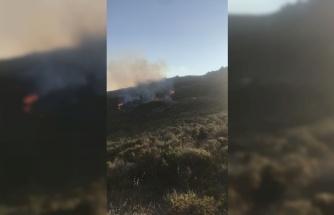 Avşa Adası'nda makilik alanda çıkan yangın kontrol altına alındı