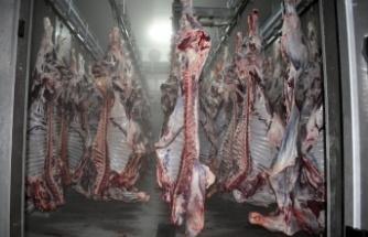Sivas'ta 118 adet büyükbaş hayvan kesildi