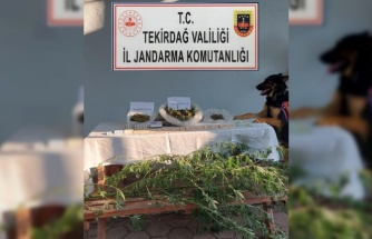 Tekirdağ'da bir evde uyuşturucu ele geçirildi