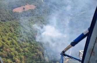 Orman yangınına havadan ve karadan müdahale ediliyor