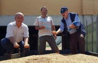 Kocaeli'de çiftçiye gübre ve tohum desteği