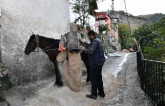 Osmangazi Belediyesi, Uludağ yollarını yeniliyor