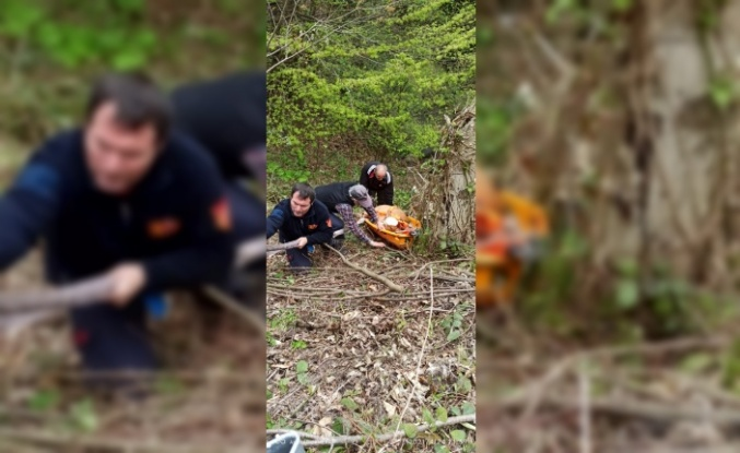 Uçuruma yuvarlanan inek kemerli sedye yardımıyla kurtarıldı