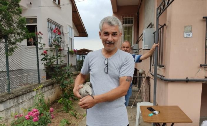 Ayağı çatıya sıkışan martıyı itfaiye ekipleri kurtardı